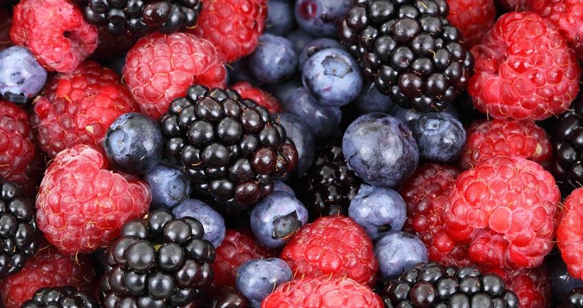 Pour cuisiner sans lactose, les fruits sont la meilleure alternative