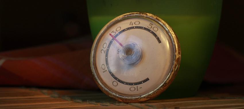 thermomètre pour mesurer la viande